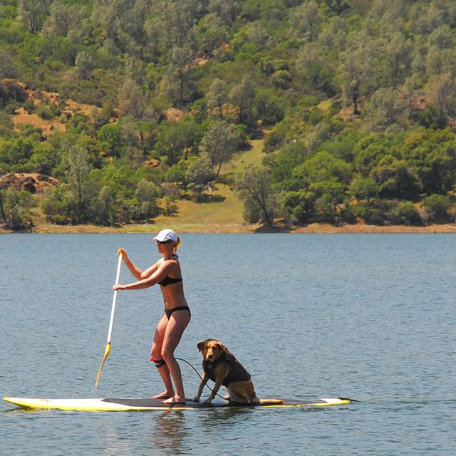 SUP con il cane. SURF STAND UP gonfiabile